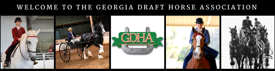 Georgia Draft Horse Association